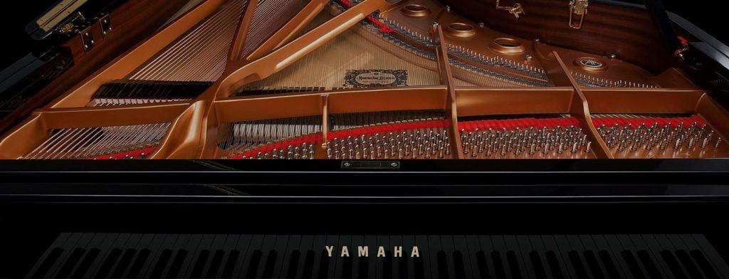 New Pianos Header 2